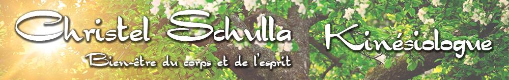 www.kinesiologieschulla.fr